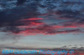 Cruise Sunsets_1_1